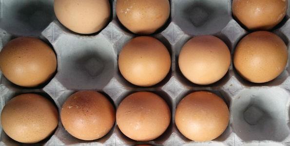 Hoy es el día Mundial del Huevo