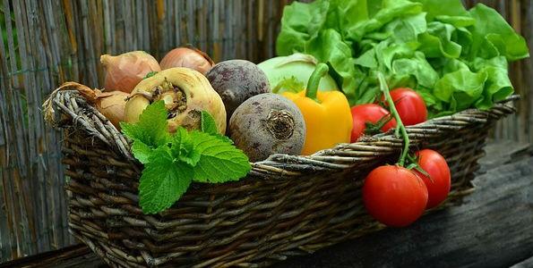 La alimentación ecológica en España